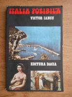 Anticariat: Victor Iancu - Italia posibila