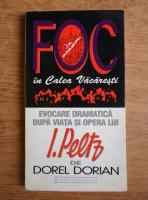 Anticariat: Dorel Dorian - Evocarea dramatica. Foc in Calea Vacaresti