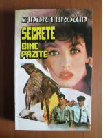 Anticariat: Sandra Brown - Secrete bine pazite