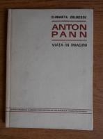 Elisabeta Dolinescu - Anton Pann. Viata in imagini