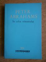 Anticariat: Peter Abrahams - In calea trasnetului