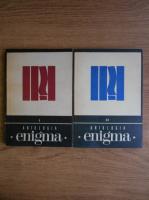Anticariat: Antologia Enigma (2 volume)