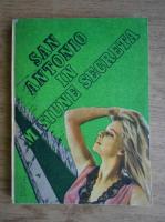 Anticariat: San Antonio - In misiune secreta