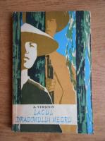 Anticariat: A. Versinin - Lacul dragonului negru