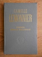 Anticariat: Camille Lemonnier - Sfarsitul familiei Rassenfosse