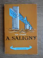 Anticariat: Ion Crisan - A. Saligny