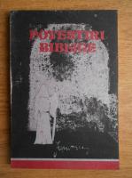 Viorica S. Constantinescu - Povestiri biblice