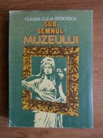 Anticariat: Claudia Cleja Stoicescu - Sub semnul muzeului. Arta de a privi