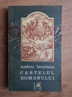 Anticariat: Andrei Brezianu - Castelul romanului