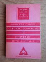 Gheorghe Adalbert Schneider - Culegere de probleme de geometrie pentru clasele VI-X