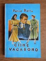 Anticariat: Petre Bellu - Caine vagabond