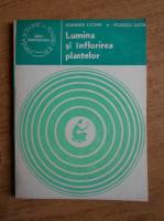 Atanasiu Lucian - Lumina si inflorirea plantelor