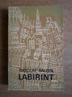 Anticariat: Nicolae Balota - Labirint