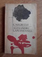 Anticariat: Costache Negruzzi - Alexandru Lapusneanul