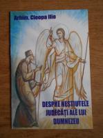Anticariat: Ilie Cleopa - Despre nestiutele judecati ale lui Dumnezeu