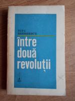 Anticariat: Titu Georgescu - Intre doua revolutii