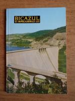 Anticariat: Victor Vintu - Bicazul si imprejurimile lui