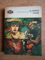 Anticariat: D. Anghel - Proza