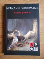 Anticariat: Hermann Sudermann - Puntea pisicilor