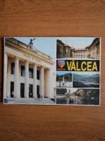 Anticariat: Judetul Valcea (monografie)