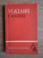 Voltaire - Candid