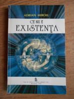 Anticariat: Adrian Miroiu - Ce nu e existenta