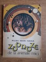 Filea Ioan Ivana - Zoonoze de la animale mici