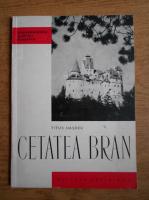 Anticariat: Titus N. Hasdeu - Cetatea Bran