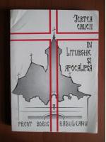 Anticariat: Boris Raduleanu - Jertfa crucii in liturghie si apocalipsa