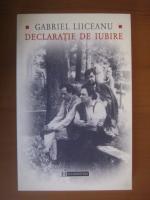 Anticariat: Gabriel Liiceanu - Declaratie de iubire