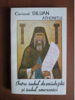 Anticariat: Siluan Athonitul - Intre iadul deznadejdii si iadul smereniei