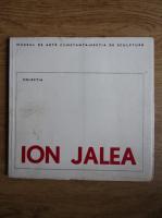 Anticariat: Ion Jalea