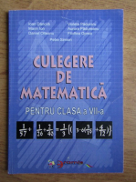 Ioan Dancila - Culegere de matematica pentru clasa a VII-a