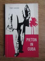 Pop Simion - Pieton in Cuba