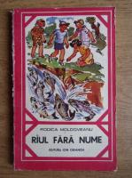 Rodica Moldoveanu - Raul fara nume