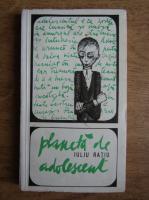 Anticariat: Iuliu Ratiu - Planeta de adolescent