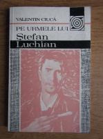 Valentin Ciuca - Pe urmele lui Stefan Luchian