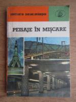 Anticariat: C. Chifane Dragusani - Peisaje in miscare