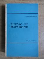 Ioan Grigorescu - Zigzag pe mapamond