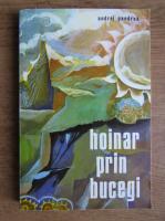 Anticariat: Andrei Pandrea - Hoinar prin Bucegi