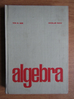 Ion D. Ion - Algebra