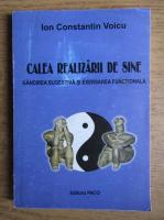 Anticariat: Ion Constantin Voicu - Calea realizarii de sine. Gandirea sucestiva si exersarea functionala