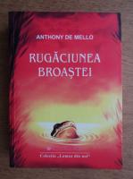 Anticariat: Anthony de Mello - Rugaciunea broastei. Povestiri pentru meditatie