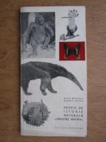 Anticariat: Mihai Bacescu - Muzeul de istorie naturala Grigore Antipa