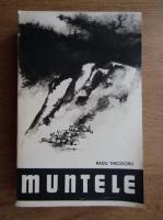 Anticariat: Radu Theodoru - Muntele