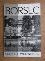 Anticariat: Kleiner Wegweiser - Borsec