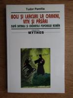 Anticariat: Tudor Pamfile - Boli si leacuri la oameni, vite si pasari dupa datinile si credintele poporului roman