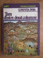 Anticariat: Luminita Doja - Tara dintre doua columne