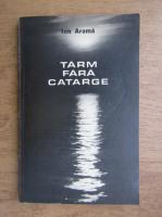 Anticariat: Ion Arama - Tarm fara catarge