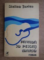 Anticariat: Stelian Turlea - Pavana in peisaj marin
